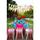 Lollipop Linens and Chair Covers